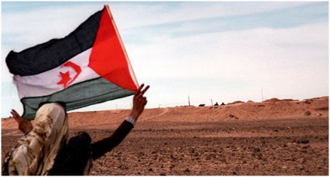 marroquíes solidarios