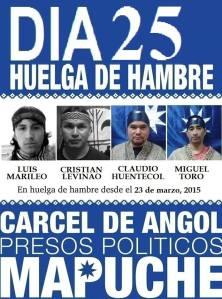 25 días en huelga de hambre mapuche