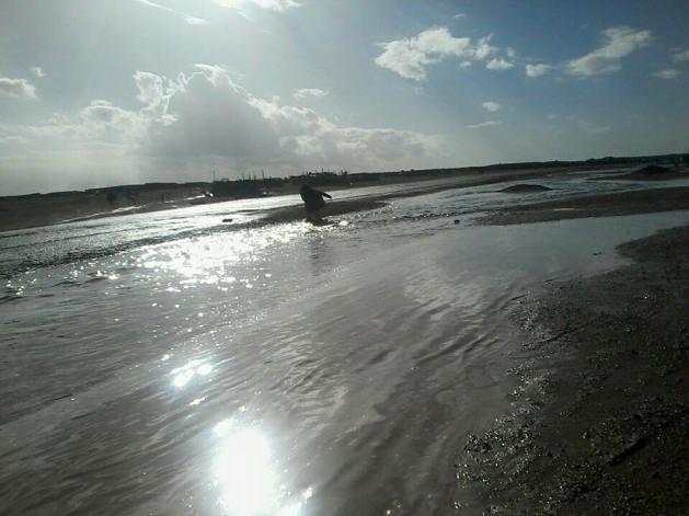 inundación 3