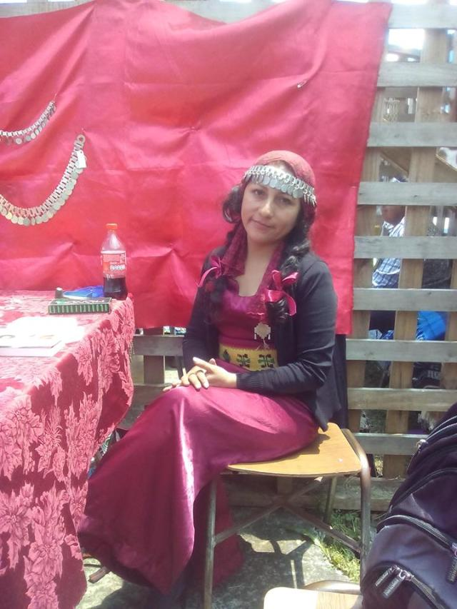 pintora mapuche Painemilla Ingrid4
