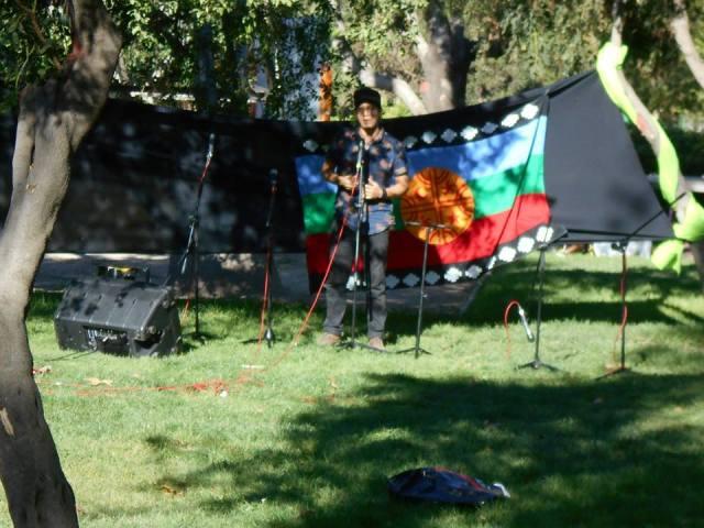 Camilo banderea mapuche2 alihuen