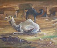 camelloss-fadel