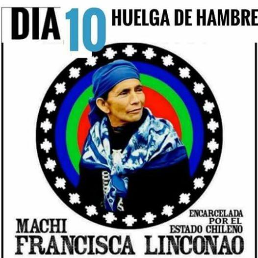 machi-francisca-lincolao-dia-10-hh
